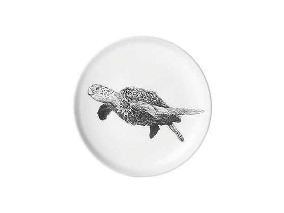 Marini Ferlazzo Dish 11.5cm Green Sea Turtle
