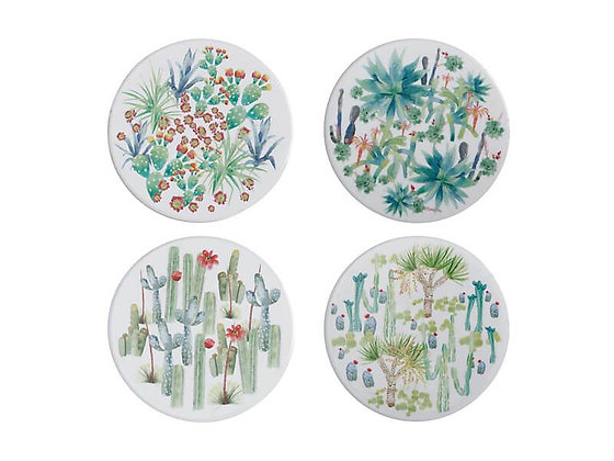 Royal Botanic Garden Arid Garden Ceramic Round Coaster 10cm Set of 4