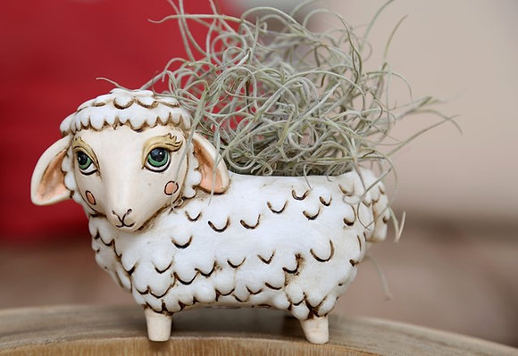 Baby white SHEEP Pla.
