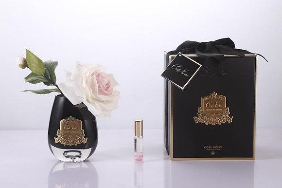 Tea Rose Pink Blush - Black