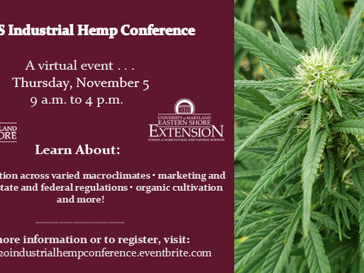 UMES Industrial Hemp Conference Goes Virtual