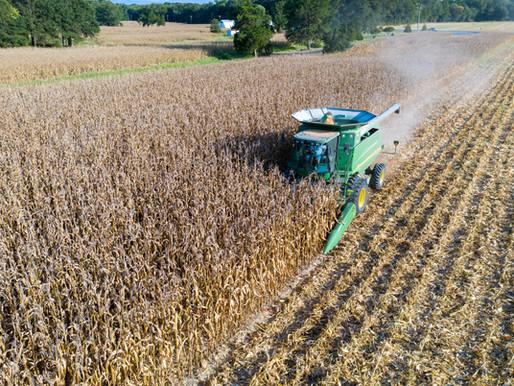 Negligent Entrustment Liability for Farm Employers