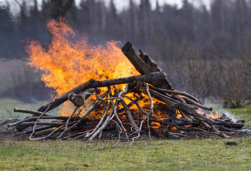 Navigating Maryland's Open Burn Laws