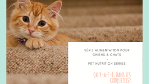 6 Facts about pet nutrition