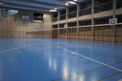 Le badminton d'ecublens, Bad pour Tous est une association sportive. N'hésitez à venir découvrir notre sport, le badminton et passer un moment sans complexes dans la bonne humeur ou tous niveaux confondus sont les bienvenus 16 ans révolu.
