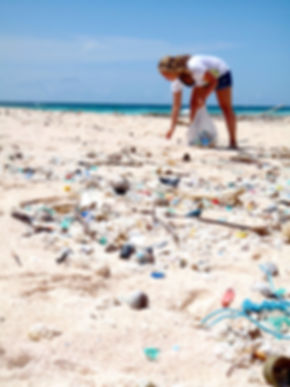 beach clean up bali nature guardians nature protection wildlife rescue.jpg