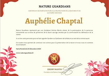 Exemple certificat.png
