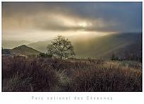 Carte postale Natureguardians.png