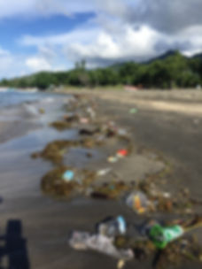 Beach clean-up Bali, Nature protection, plastic pollution, nature gardians, wildlife rescue