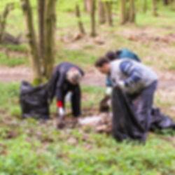 forest clean-up, France, Nature Guardians, Nature conservation, Protction de la nature
