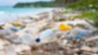 Plastic pollution, australia, beach clean-up, nature guardians, nature rescue, wildlife protection