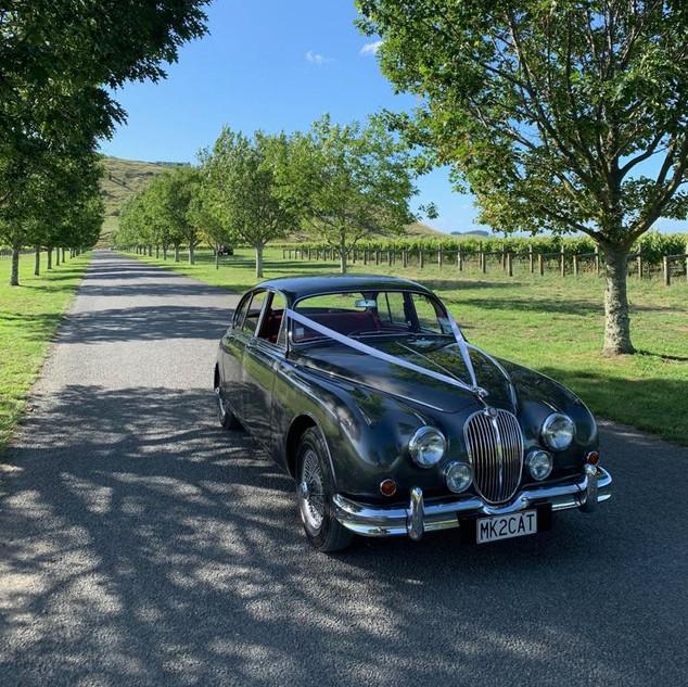 Jaguar Mark II wedding rental