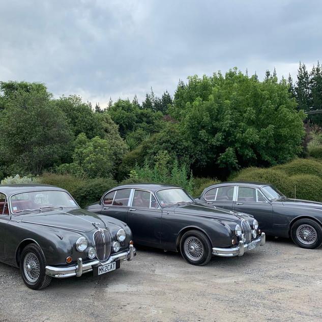 Jaguar Mark II wedding hire