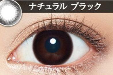 日本Evercolor Natural Black 1盒10對