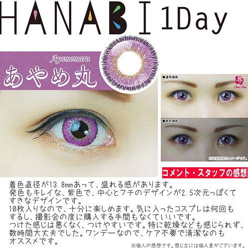 日本Hanabi 紫色 ***散裝1對***