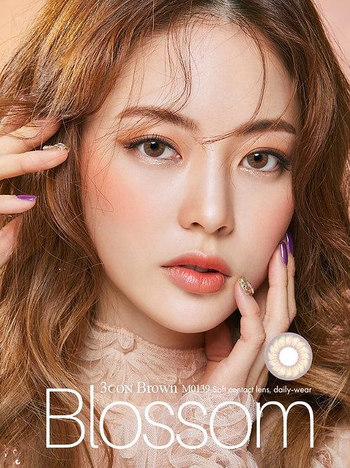 韓國Olens Blossom Brown