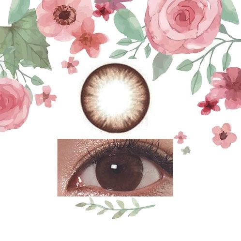 韓國GEO Eyelyne Brown
