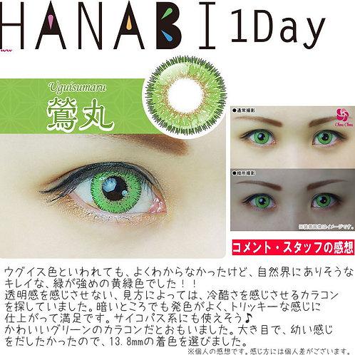 日本Hanabi 青色 ***散裝1對***