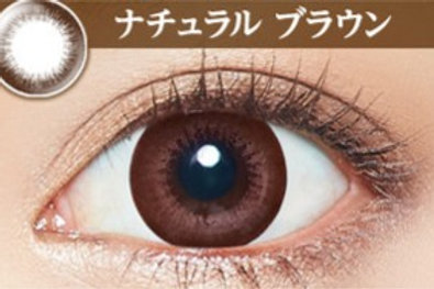 日本Evercolor Natural Brown 1盒10對