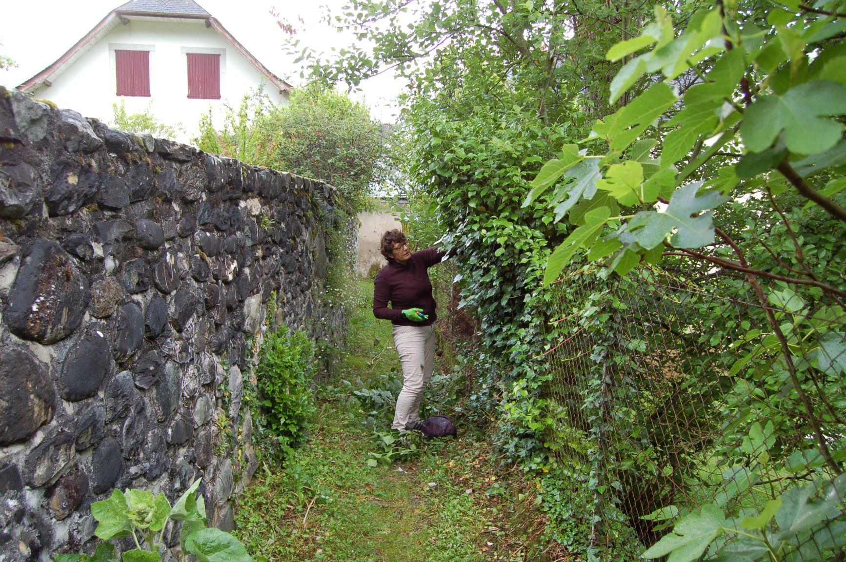 Le chemin des jardins