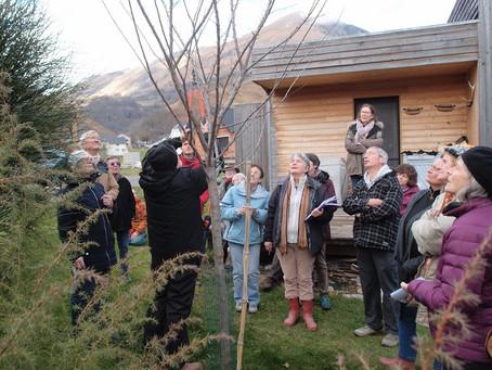 Formation à la taille des arbres fruitiers