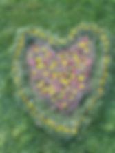 Coeur hors catégorie