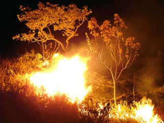 Geólogos afirmam que fumaça em terreno no Recreio é causada por incêndio subterrâneo provocado por c