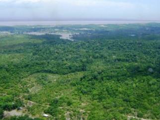 Nova Fronteira da Mineração - Amazônia