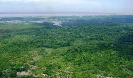 Mineracao Amazonia.jpg