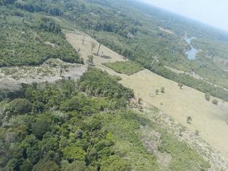 Pacific Potash pode perder direitos minerários de potássio no Amazonas