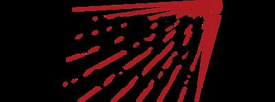 Convergint Logo.png