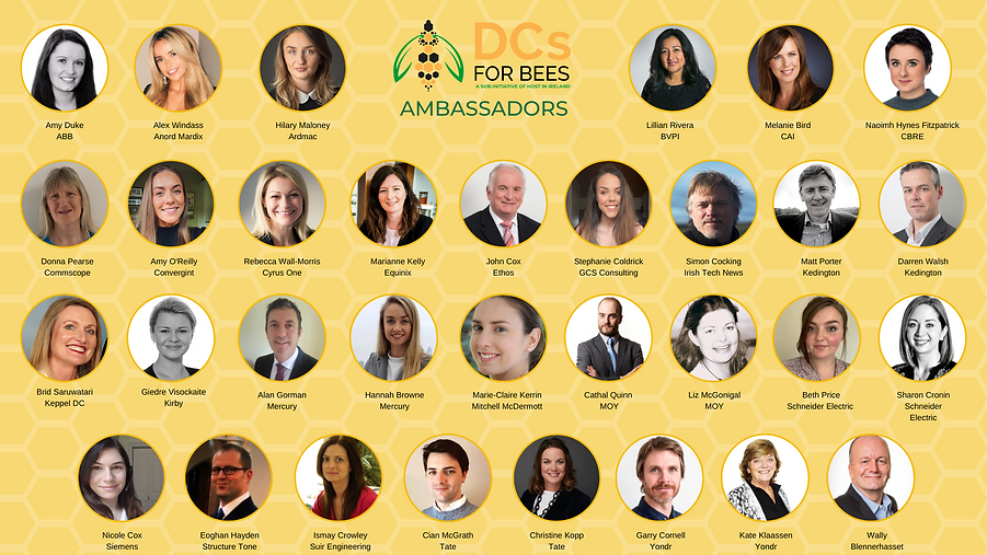 DCs for Bees Ambassadors MARCH 2021.png