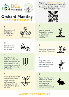 Orchards PDF Planting Instructions Download Website A4 (3).png