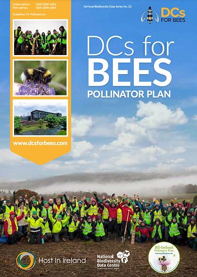 Host In Ireland Dcs For Bees Pollinator Plan