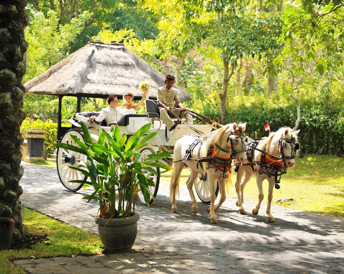 Asian Resort  -アジアンリゾート-