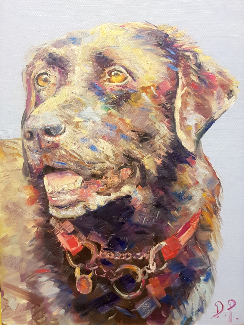 A3 oil on canvas of a cholate brown lab