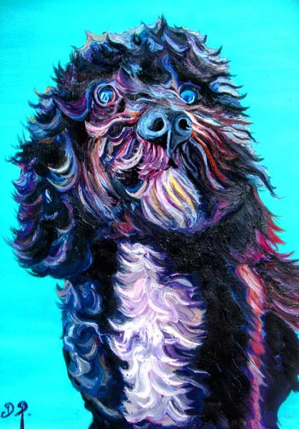 Bright blue pet portrait comissions A3 oil on canvas