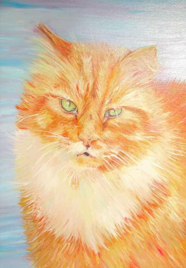 Time lapse, Oil Painting of a Cat