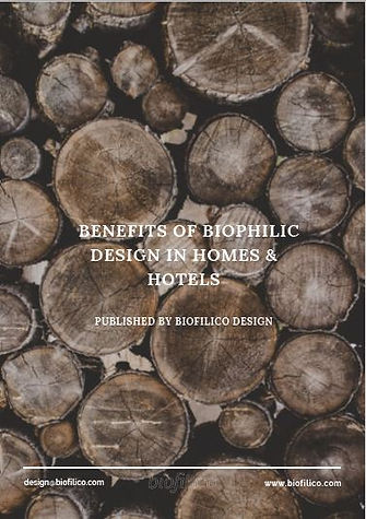 Benefits of Biophilic Design Homes Hotel