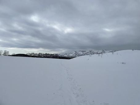 2月最後の本日も山へ