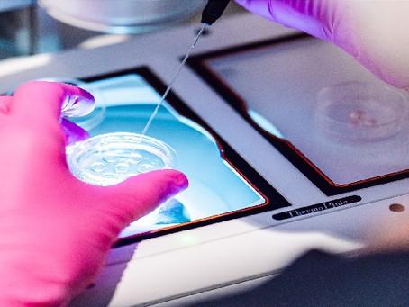 Diferença entre inseminação artificial e fertilização in vitro: entenda!
