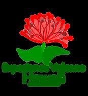 Experience Volcano Hawaii Logo (Transpar
