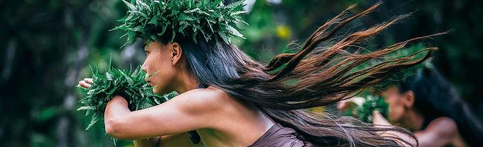Hula Arts At Kilauea 001.jpg