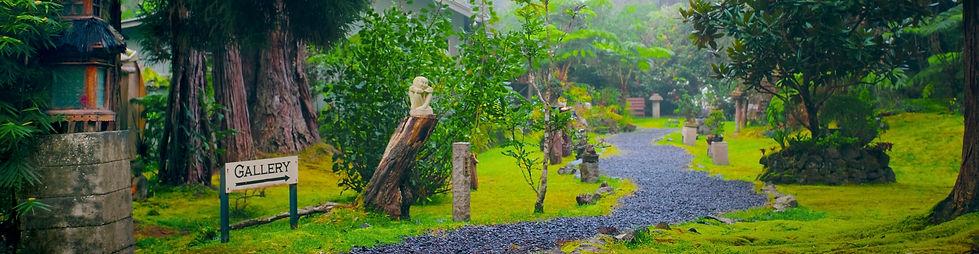 Volcano Garden Arts Misty Path