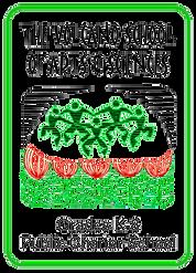 VSAS Logo.png