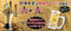釧路食堂 釧路 釧路市 食堂 居酒屋 宴会 食事 ビール 飲み比べ 超炭酸 ハイボール サワー カクテル いくら丼 新子焼き 海産物 激安 ゼウスタワー設置