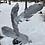 Thumbnail: Falling Feathers