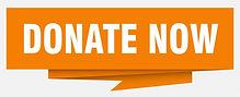 Donate-Now-graphic-1024x415.jpg