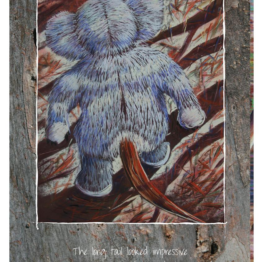 Koala Tails 21