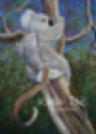 Koala Tails SAMPLE 01.jpg